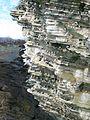 Birsay colony.jpg