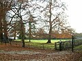 Bletchingdon Park - geograph.org.uk - 91806.jpg