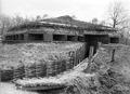 Blockhaus an elsässischer Grenze - CH-BAR - 3241880.tif