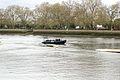 Boat Race 2014 (16).jpg