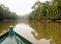 Boating down the Kinabatangan River (14157367304).jpg
