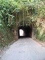 Boca sul do pequeno túnel da E.F.O.M. em Barbacena - panoramio.jpg