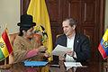 Bolivia deposita Instrumento de Ratificación al Protocolo sobre el compromiso con la Democracia (11088036453).jpg