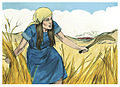 Book of Judges Chapter 6-1 (Bible Illustrations by Sweet Media).jpg