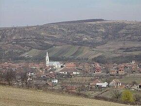 Vedere panoramică asupra satului, Biserica reformată din Borla în centru