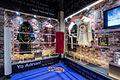 BoxingHallOfFame 3 HollywoodAndAliExhibits.jpg
