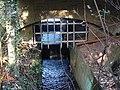 Bracebridge Pool overflow and drainage channel - geograph.org.uk - 1575824.jpg