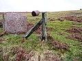 Bracken straw bales, a Radnorshire oddity - geograph.org.uk - 693904.jpg