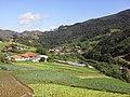 Brasil rural - panoramio (26).jpg