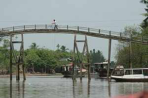 Vĩnh Long - Narrow bridge over canal on the island of An Binh.