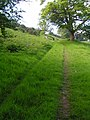 Bridleway, near Muncaster - geograph.org.uk - 457386.jpg