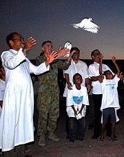 Brigadier Mark Holmes releases a dove