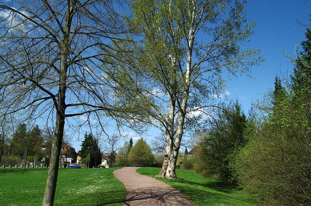 File:Britzer garten weg am park entlang.JPG - Wikimedia Commons