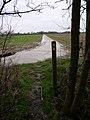 Broad Lane, Great Horkesley - geograph.org.uk - 321836.jpg