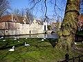 Brugge - panoramio (8).jpg