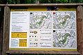 Buchholzer Forst Nordic Walking.jpg