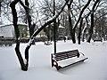Bucuresti, Romania. PARCUL GRADINA ICOANEI. Peisaj hibernal cu banca (B-II-a-B-18301).jpg