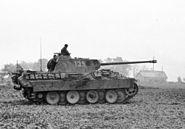 """Bundesarchiv Bild 101I-696-0432-13, Polen, Panzer V """"Panther"""" auf dem Feld.2"""