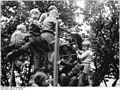 Bundesarchiv Bild 183-K0716-0001-001, Reutz-Lottewitz, Kinder des Erntekindergartens.jpg