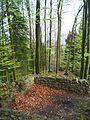 Burg kindhausen bergdietikon 10.jpg