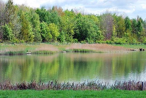 CCP spring lake