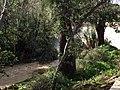 CHADWICK LAKES - panoramio (3).jpg