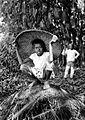 COLLECTIE TROPENMUSEUM Portret van een Javaanse jongen met grote hoed te Tjitajam TMnr 10005306.jpg