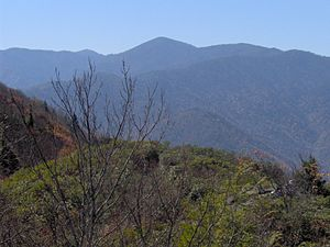 Mount Guyot (Great Smoky Mountains) - The Guyot massif, with Mt. Guyot at the center, looking west from Mt. Cammerer