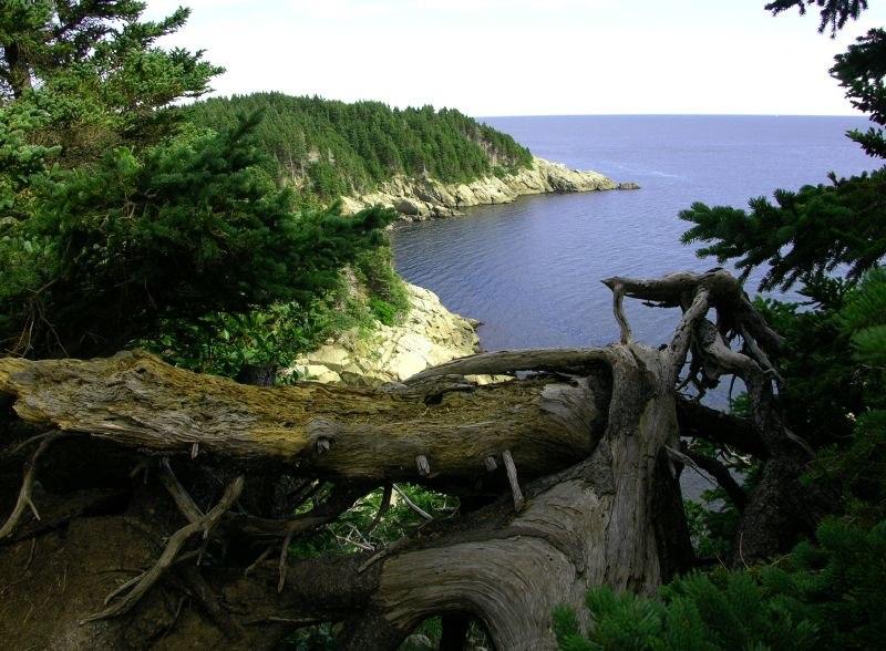 Cape breton island 1
