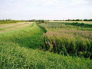 Car Dyke Ditch which runs along the western edge of the Fens in eastern England