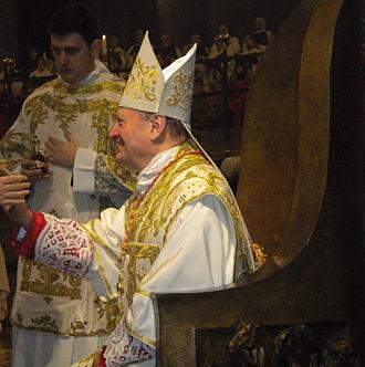 Gianfranco Ravasi - Cardinal Ravasi in Lodi, 19 January 2014, during the solemn mass of St Bassianus.