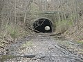 Carr's (Witches') Tunnel in 2013 02.JPG