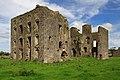 Castles of Munster, Ballynakill, Tipperary (1) - geograph.org.uk - 2495560.jpg