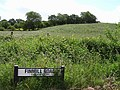 Cavanreagh, Sixmilecross - geograph.org.uk - 850669.jpg