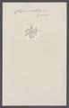 Cellepora ocellata - - Print - Iconographia Zoologica - Special Collections University of Amsterdam - UBAINV0274 093 05 0004.tif