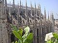 Cerchia dei navigli, Milano, Italy - panoramio (3).jpg