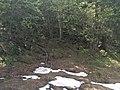 Chamonix, France - panoramio (66).jpg