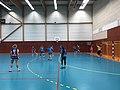 Championnat de France féminin de handball U18 - ENTENTE PAYS DE L'AIN vs LA MOTTE-SERVOLEX (2017-11-12) - 7.JPG