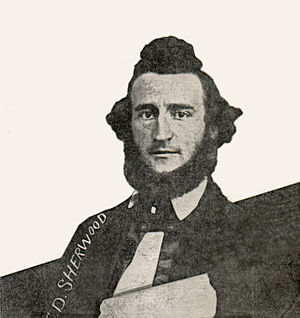 Charles D. Sherwood - Detail of an 1865 photo of the Minnesota State Senate showing Charles D. Sherwood.
