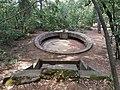 Charlotte's well lokrum 2019-08-23 4.jpg