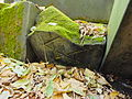 Chenstochov ------- Jewish Cemetery of Czestochowa ------- 202.JPG