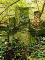 Chenstochov ------- Jewish Cemetery of Czestochowa ------- 44.JPG
