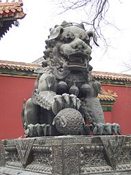 Lion Dog China Video