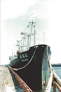 Chinese Ship.jpg