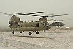 Chinook and Black Hawk, 1st ACB take-off 110627-N-TH989-160.jpg