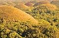 Chocolate hills - panoramio (1).jpg