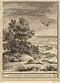 Choffard-Oudry-La Fontaine-La chauve-souris, le buisson et la canard.jpg
