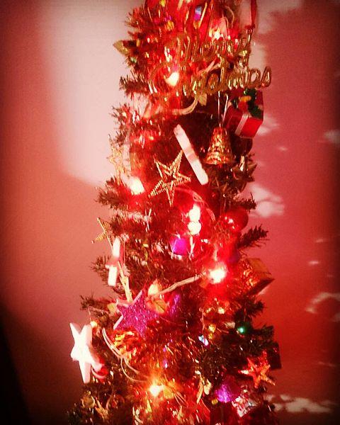 File:Christmas Tree (23479574469).jpg