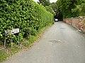 Church Street Bunny - geograph.org.uk - 1335600.jpg