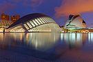 Ciutat de les Arts i les Ciències à la noche.jpg